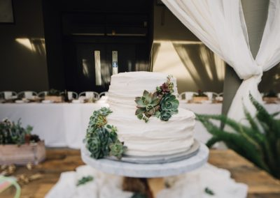 Orrin & Margo Cake With Succulent Design