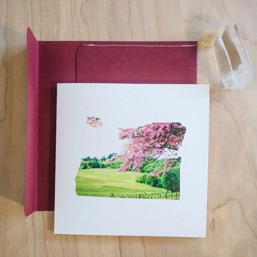 Oregon Vineyard Card by Selkie Stationery