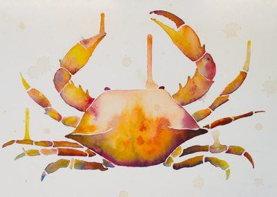 Colorful Watercolor Crab